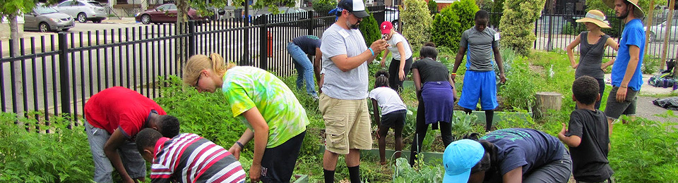 learn about our urban garden program - Urban Garden