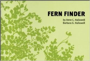 Fern Finder / Hallowell