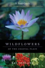 Wildflowers of the Coastal Plain / Neyland
