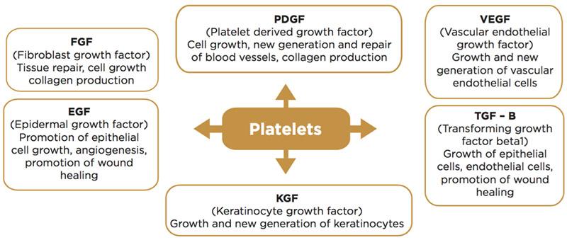 prp platelet rich plasma treatments ny