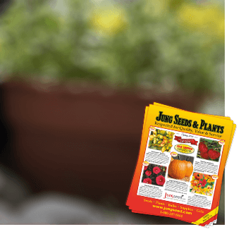 Jung Seed: Vegetable Seed, Flower Seed, and Garden Supplies