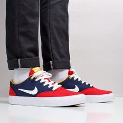 b368eef717 Nike SB Dry T-shirt. Urban Industry Urban Industry. Nike SB Charge  Solarsoft Shoes
