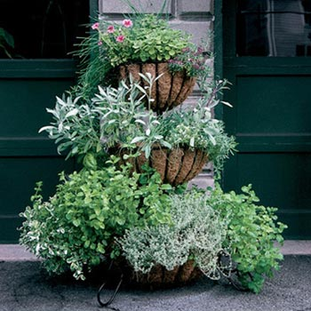Kinsman Garden | EverEdge Lawn Edging U0026 Decorative Gardening