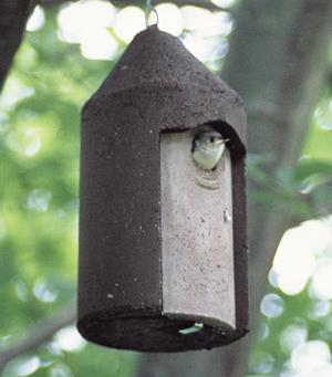 "1 1/4"" Free Hanging Birdhouse"