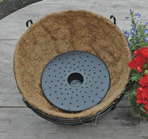Basket Well