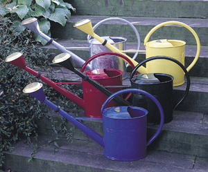 Small Galvanized Oval Watering Can