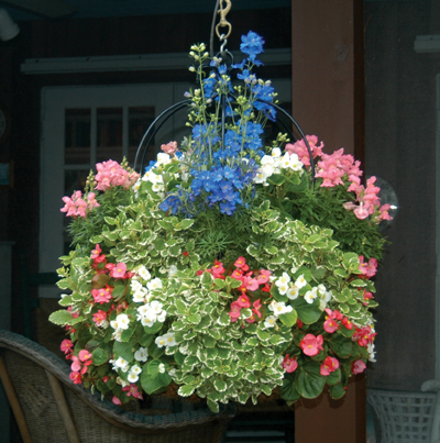 "16"" Single Tier Imperial Hanging Planter & Liner Set"