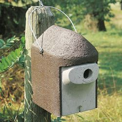 1 1/4 Inch Predator Proof Birdhouse