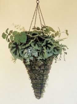 "Black 12"" Conical Hanging Basket (Planter Only)"