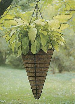 """Black 12"""" Conical Hanging Basket/Liner Set"""