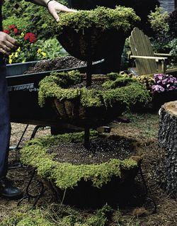 Floral Sheet Moss (1 1/2 Cubic Feet)