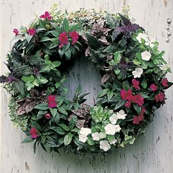 "Large 24"" Living Wreath Form with Jute Liner"