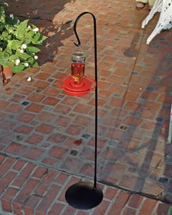 Hummingbird Feeder Stand