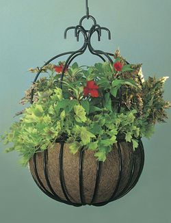 "18"" Imperial Hanging Planter"