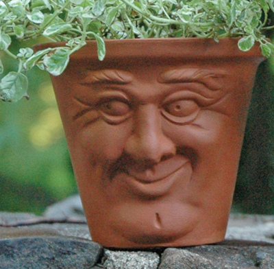 Cheerful Face Pot