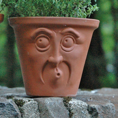 Surprised Face Pot