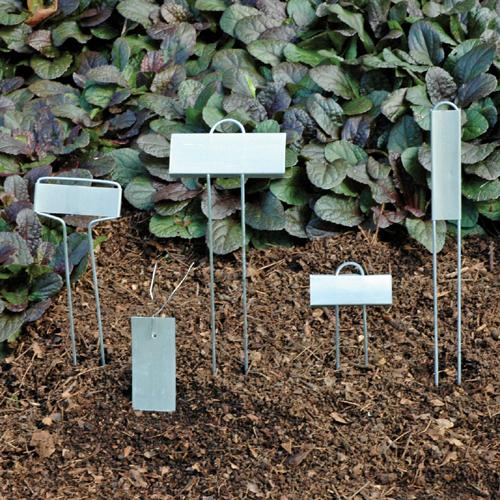 Rose Style Zinc Plant Markers (E)