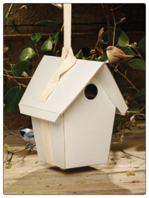 Totally Green Birdhouse Kit