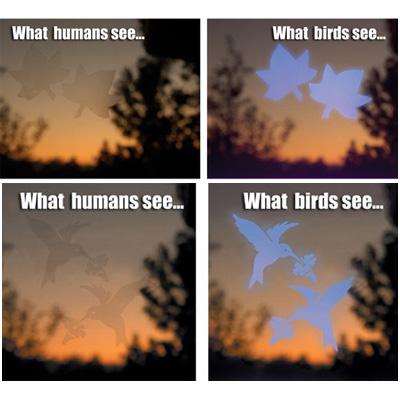 Window Warning Decals Maple Leaf Window Alert - Window alert decals for birds