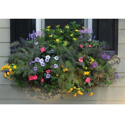 "24"" Window Box Planter & Liner Set"