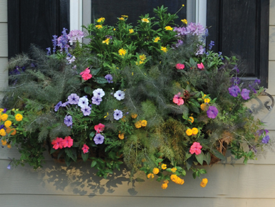 "36"" Window Box Planter & Liner Set"