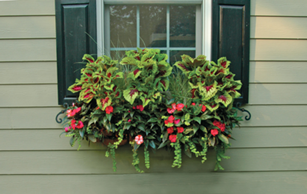 44 Inch Window Box Planter Liner Set Window Box Planters