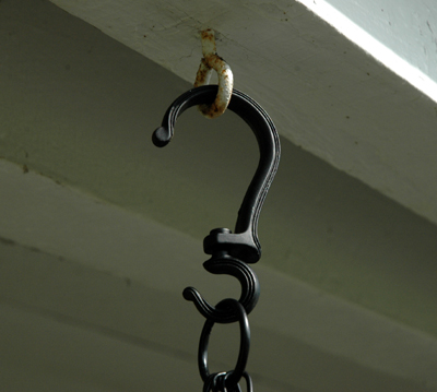 Hanging Plant Swivel Hook