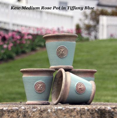 Kew Medium Rose Pot