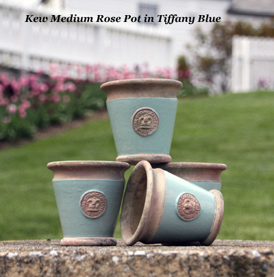 Kew Medium Rose Pot