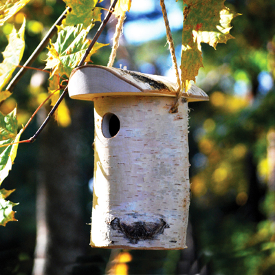 Small Bird Nest Box