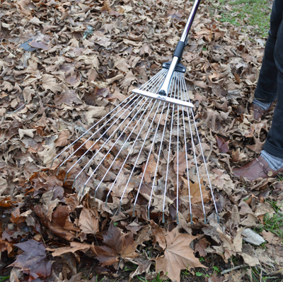Darlac tools darlac leaf rake telescopic and expandable for Large rake garden tool