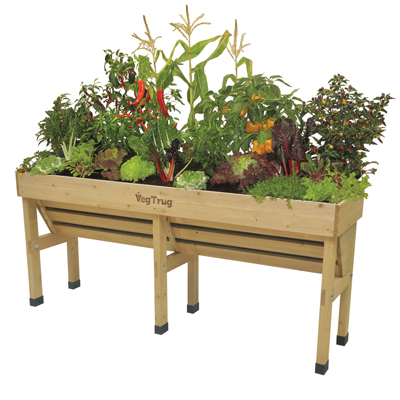 Medium Wallhugger VegTrug