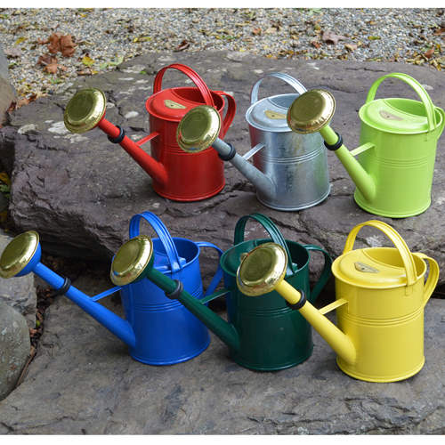 Large Classic Watering Cans