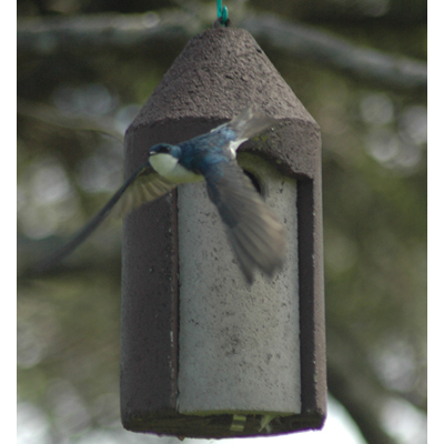 "1 1/2"" Free Hanging Birdhouse"