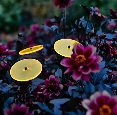 Suncatcher Sunflower Bouquet