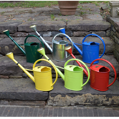 Small Lime Green Oval Watering Can
