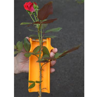 Rose Stem Cleaner