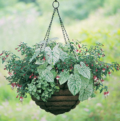 "20"" Old Fashioned Hanging Basket & Coco Fiber Liner Set"