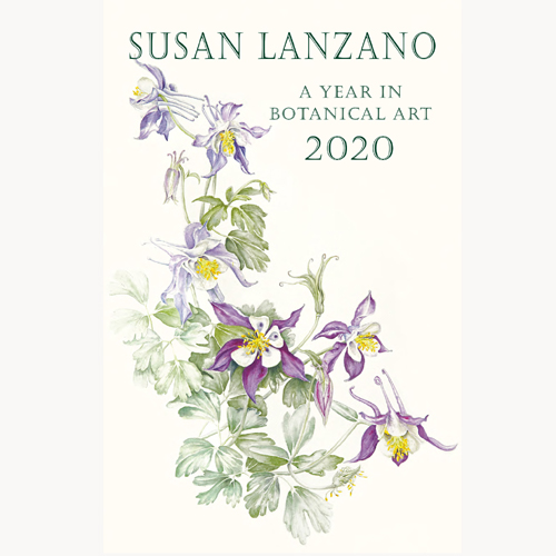 2020 Botanical Flower Wall Calendar by Susan Lanzano