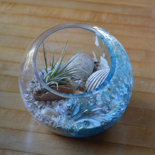 """7"""" Hand Blown Art Glass Terrarium"""