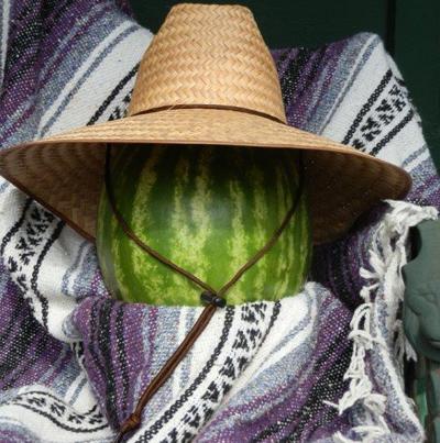Large Nurserymans Hat | Gardening Hats | Kinsman Garden
