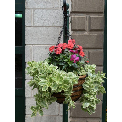 "14"" Old Fashioned Hanging Basket & Coco Fiber Liner Set"