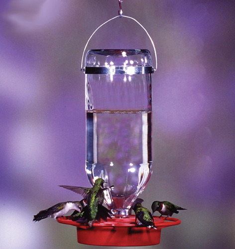Hummingbird Feeders, Etc.