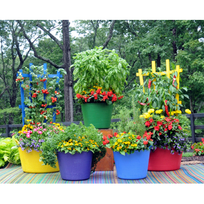 Colorful Trugs & Trellises