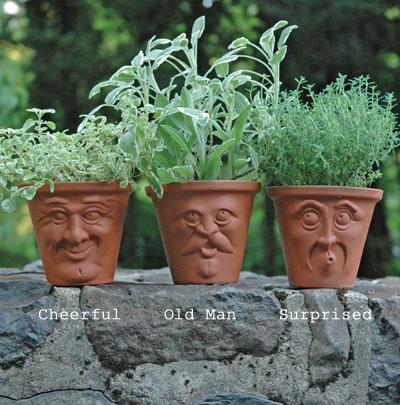 Face Pots