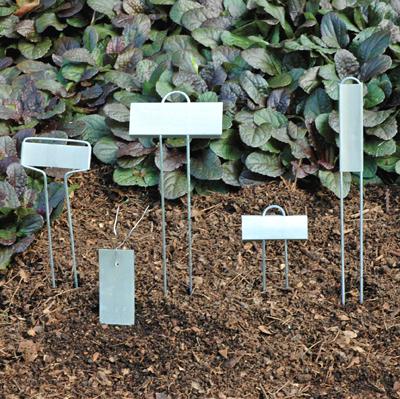 Zinc Plant Markers