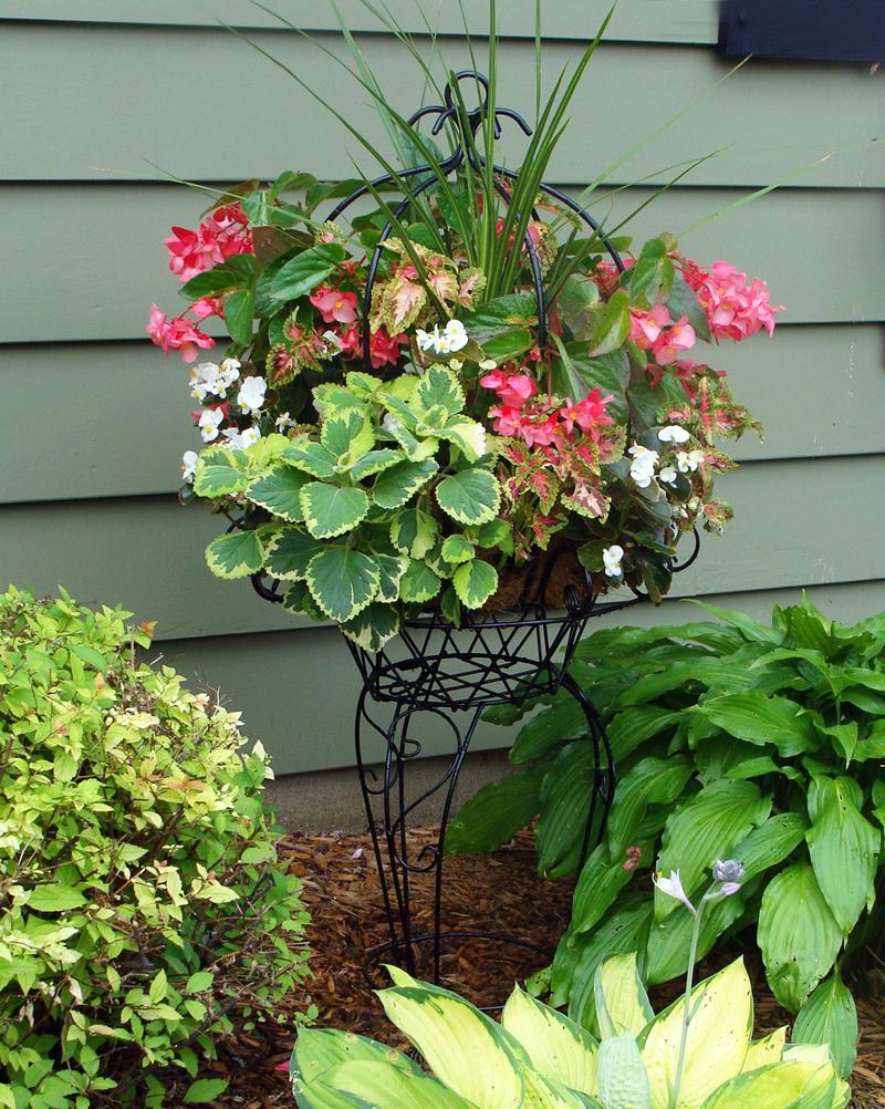 Hanging Flower Baskets Spokane : Pamela crawford planters kinsman garden