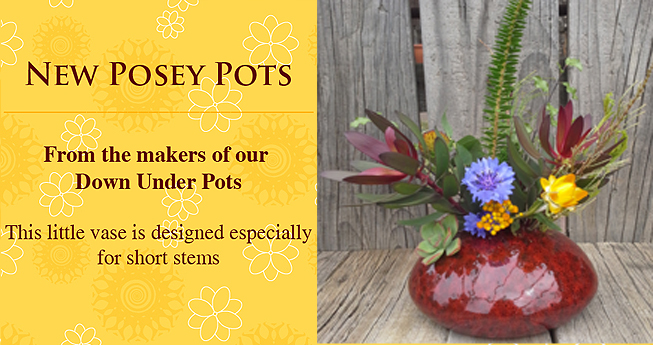New Posey Pots