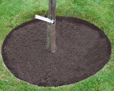 EVEREDGE 3 FT. DIA. 3-PIECE TREE RING