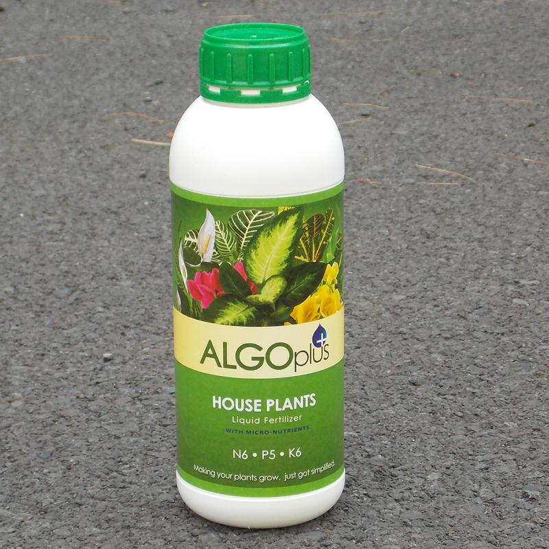 CS/12 (ALGO) HOUSE PLANT FERTILIZER